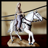 Setting-Out-on-the-Silver Khaleesi Daenerys